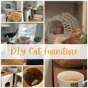 images of a custom cat furniture project