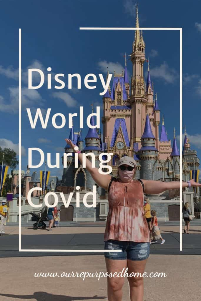 Pinterest Pin about Disney World during Covid