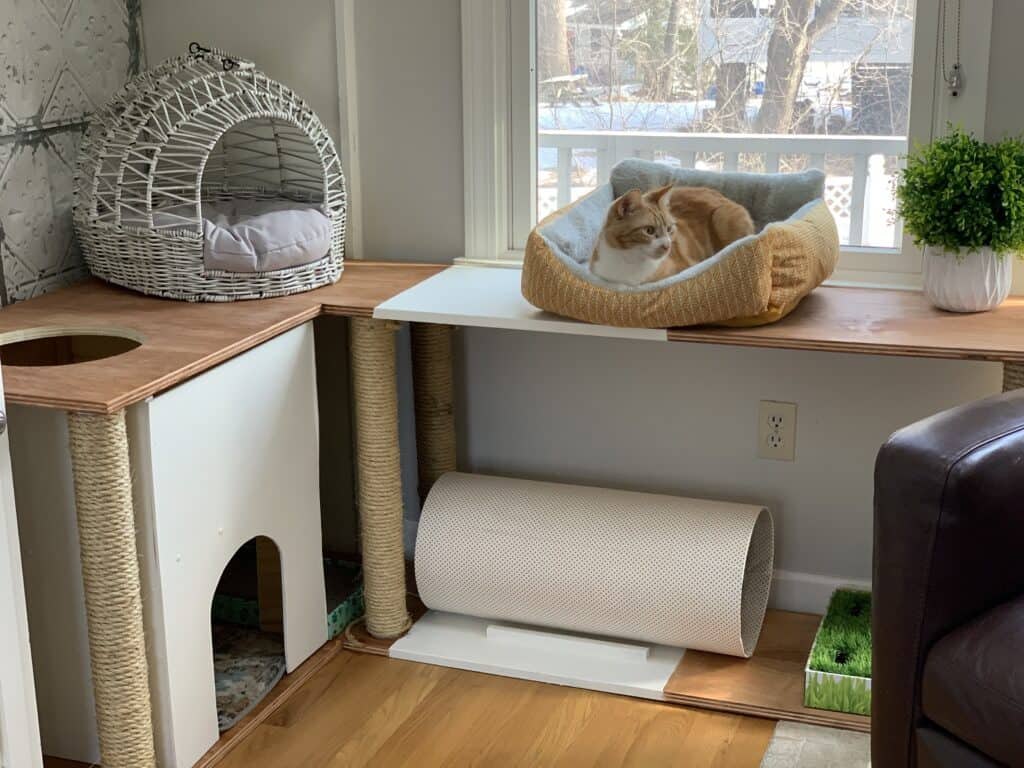 DIY cat furniture including cat house, tunnel, and beds