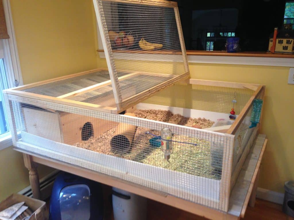 farmhouse styled table used to hold a very large guinea pig cage