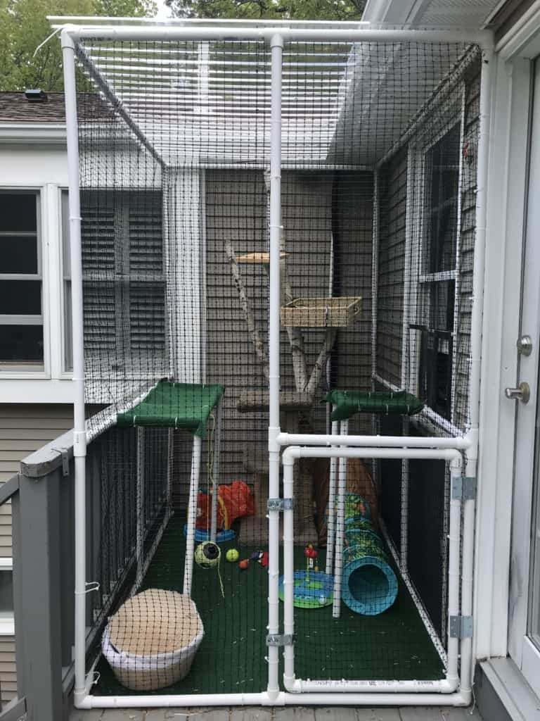 finished view of a custom made catio or cat enclosure made from PVC pipes and garden netting