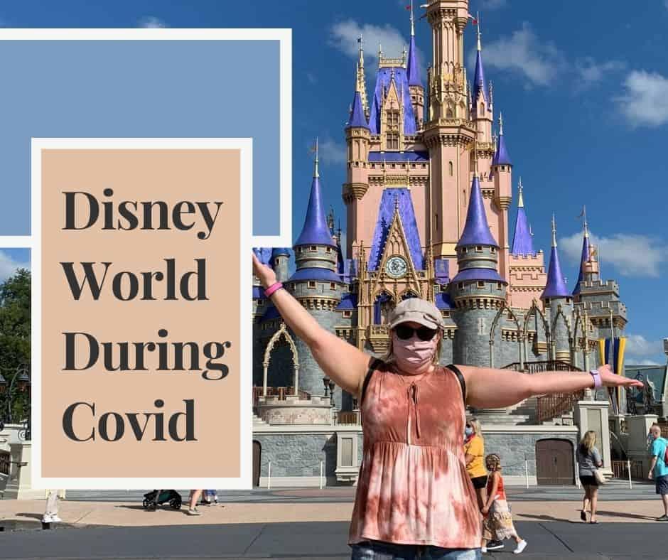 Disney World during Covid?