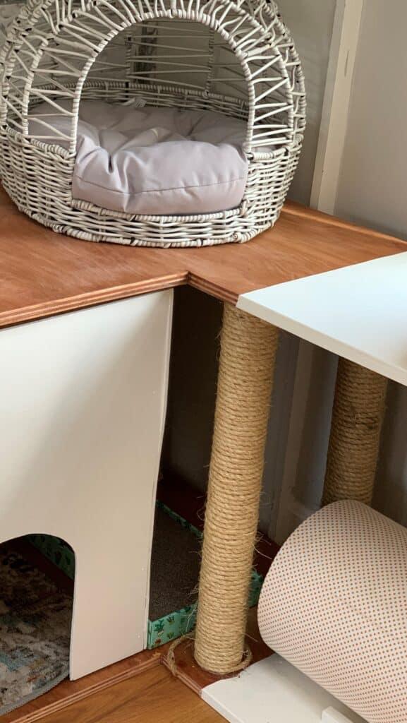 close up of cat furniture