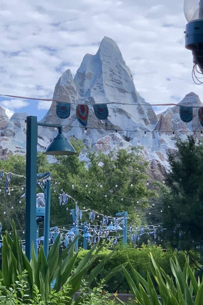 Everest in Disney World