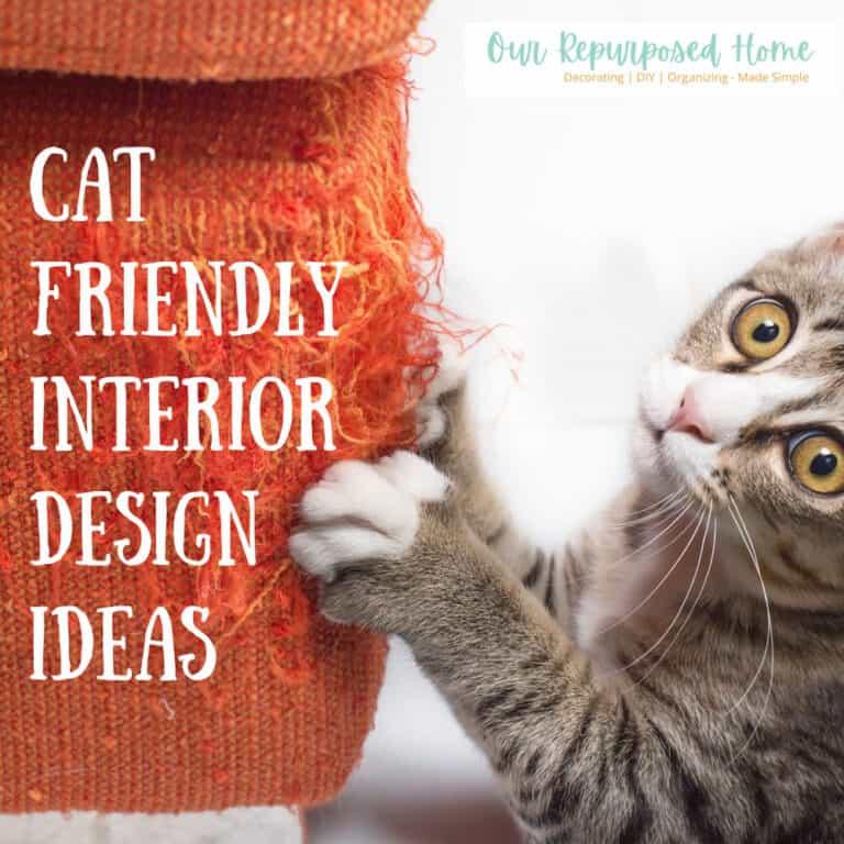 Cat Friendly Interior Design