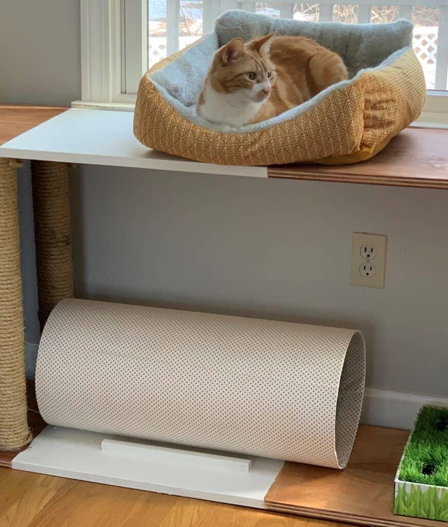 cat tunnel inside a custom cat furniture piece